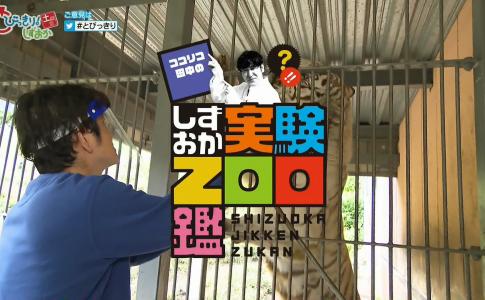 Zoo 鑑 ふしぎ アニマル テレビ朝日【アニマルふしぎZOO鑑】アニメーション